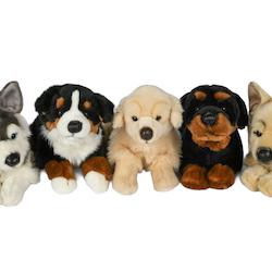 Hundar 5 sorter