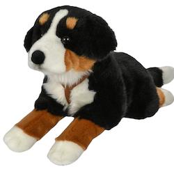 Hund Berner Sennen XL
