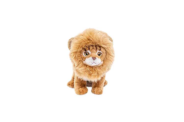 Katt med lejonman