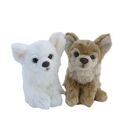 Hund Chihuahua 2 ol.