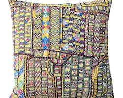 Gujarat kudde