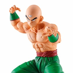 Dragon Ball Z Tien Ichibansho The warriors protecting the earth