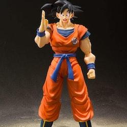 Dragon ball Z Son Goku (A Saiyan Raised On Earth) S.H.Figuarts
