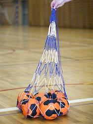 Ball nett