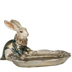 Kanin med fat