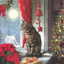 IHR servett katt jul