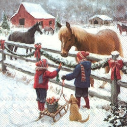 IHR servett vinterhäst