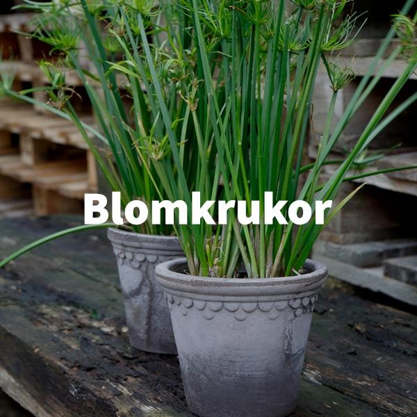 Blomkrukor - Swift Demobutik