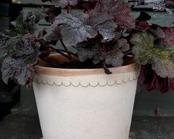 Helena kruka (terrakotta 14 cm) - Bergs Potter