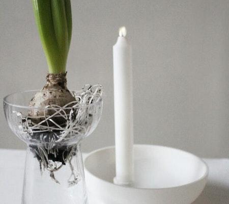 KULLTORP, hyacintvas
