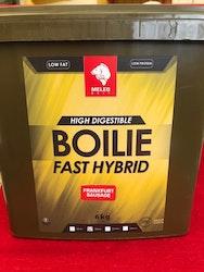 Fast Hybrid boilies 6kg