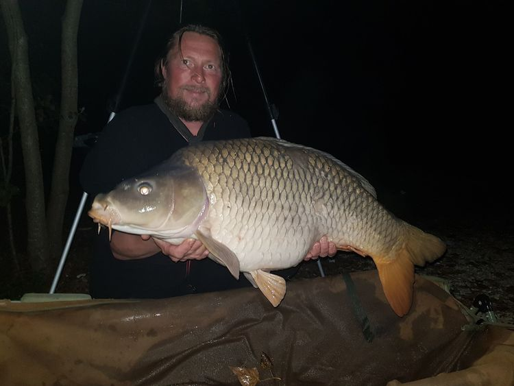 Karp fiske sjö