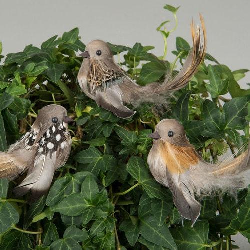 Fågel/Stick Vingar Natur 11cm