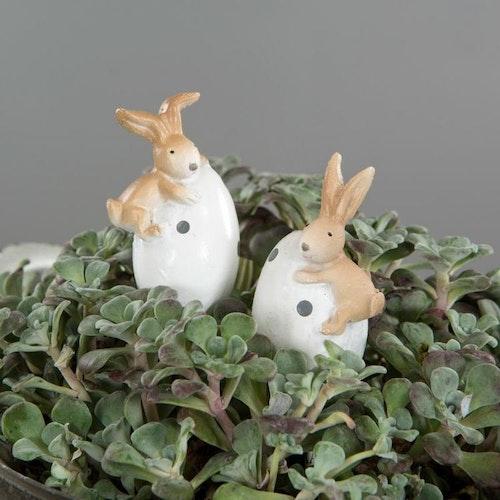 Kanin på ägg sticks