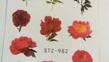 Stz-982