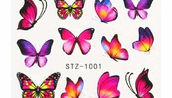 Stz-1001
