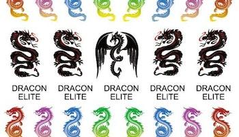 Dragon Stickers Blandade färger
