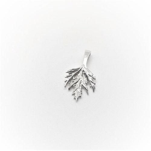 Ornässmycket Musöra silver