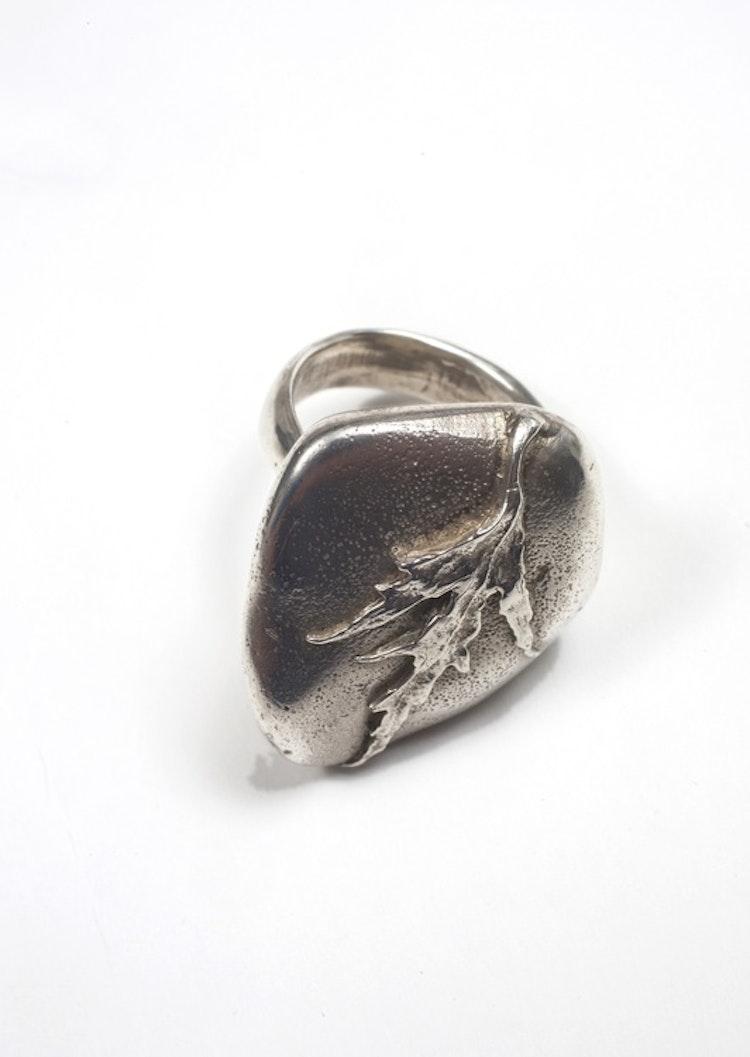Ring blankpolerad Silver