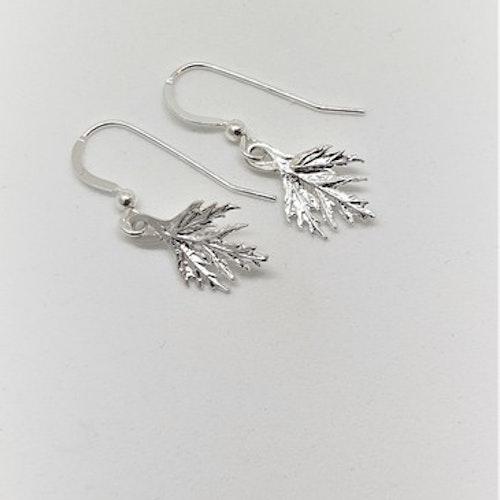 Örhängen Musöra silver