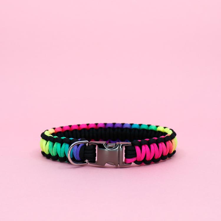 Regnbågsfärgat hundhalsband knutet för hand i paracord – en väldigt slitstark nylonlina.
