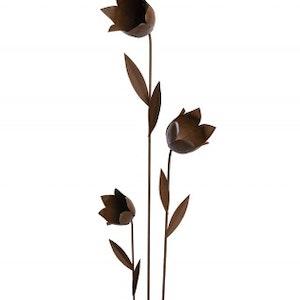 3-p blommor rost