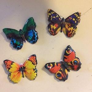 fjärils brosch