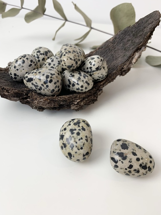 Dalmatiner jaspisen cuddlestone hjälper dig att sortera och förverkliga tankar och idéer. Den hjälper dig att vara noggrann och är bra om du tänkt starta företag.