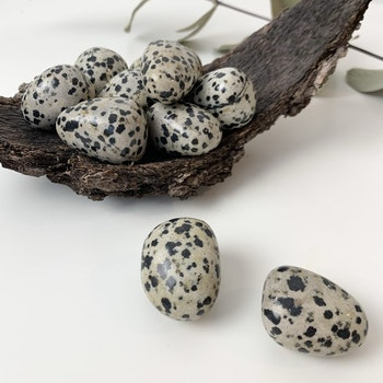 Dalmatiner jaspis, cuddlestone