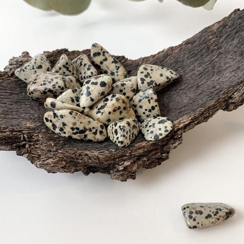 Trumlad Dalmatiner jaspis