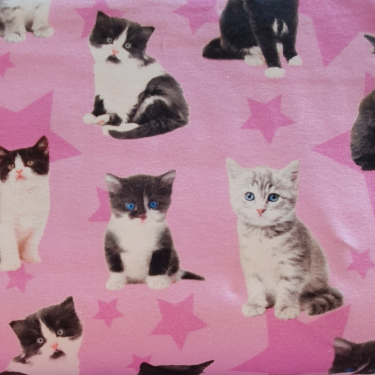 Katt rosa