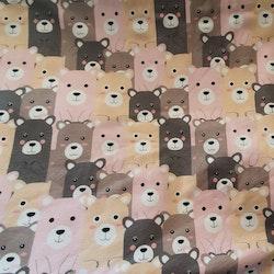 Nallar björnar