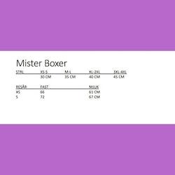 Mister boxer