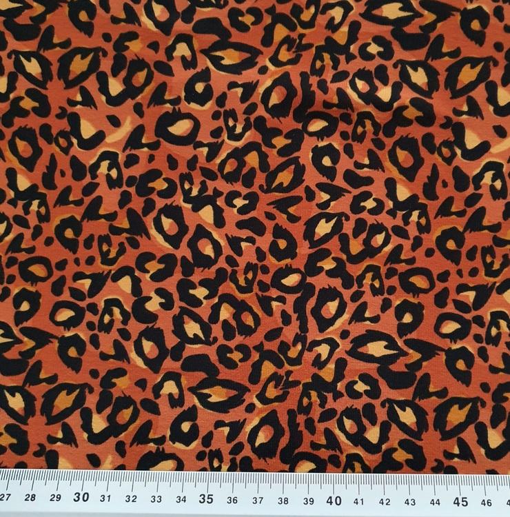 Orangerost leo