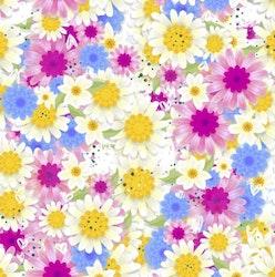 Blommor färgglada