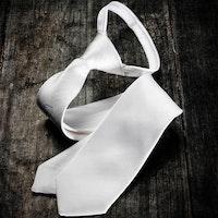 Equiline Quick Tie slips