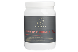 Joint N' Mobility 800g