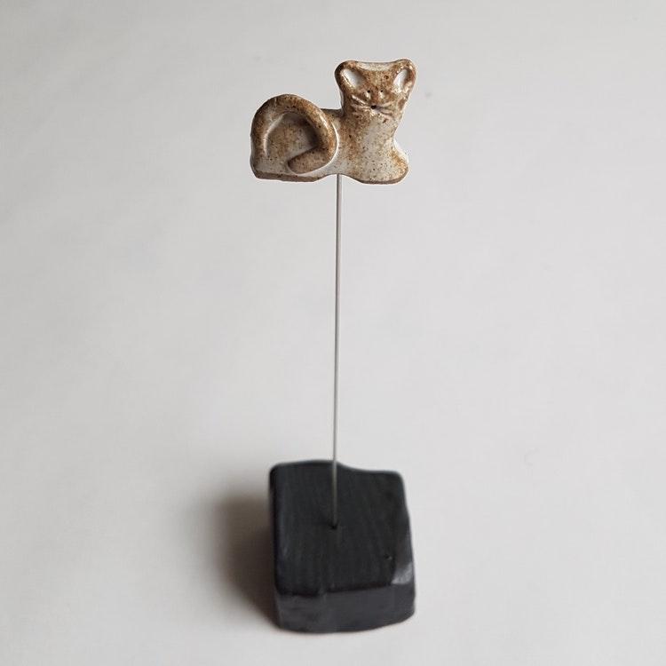 Potatissticka Katt