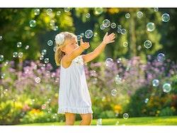 Bubbelkompis
