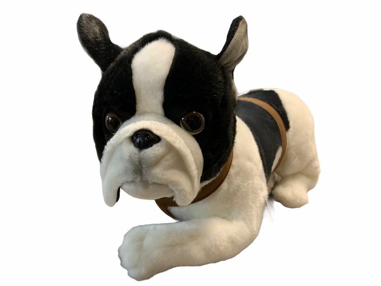 Stor fransk bulldog