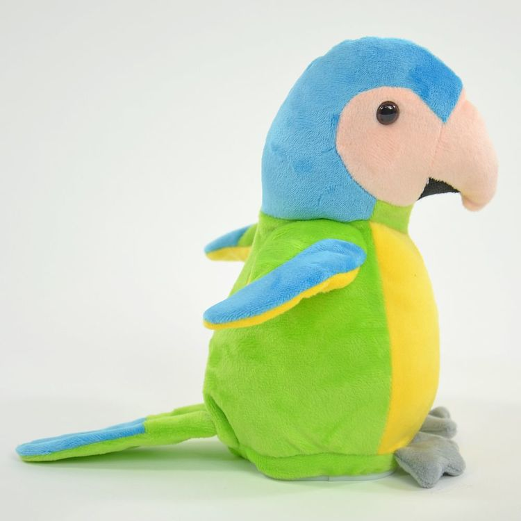 Härmdjur Papegoja Samira