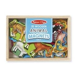 Magnetset djur