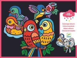 Coloring velvet, Baby birds