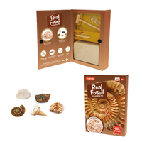 Fossil Dig Kit