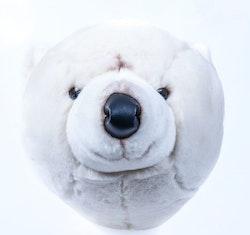 Isbjörnshuvud