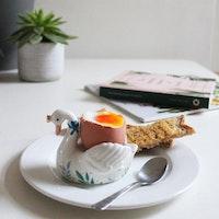 Äggkopp- Swan