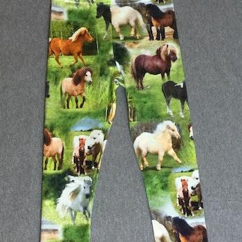 411 Leggings Hästar i hagen
