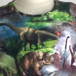 504 T-shirts Dinosaurie