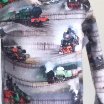 551 T-shirts Lång ärm Tåg