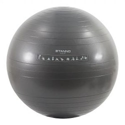 Stanno Exercise Ball